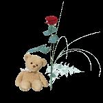 En röd ros tillsammans med en nalle från Interflora.