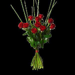 Ståtlig bukett med 10 höga, röda rosor.