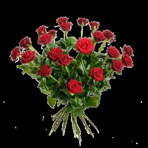 En grandios rosbukett med 24 st röda rosor!