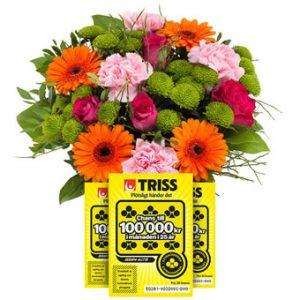 Bukett med blandade blommor i orange, rosa, rött och lime samt tre trisslotter. Ett gåvoset ur Euroflorists sortiment.