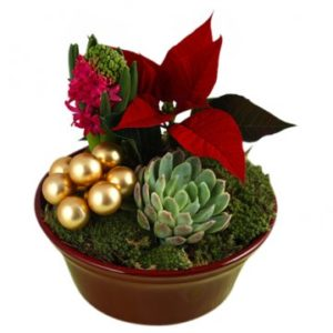 Rund skål med julgrupp; röd julstjärna, hyacint, julpynt, mossa mm. Finns att beställa hos Florister i Sverige - skicka den med bud!
