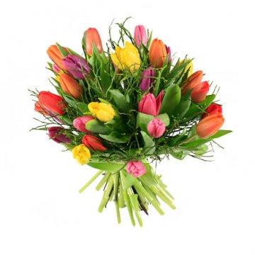 Tulpanbukett med blommor blandade, glada färger. Skicka blomsterbud via Florister i Sverige!